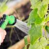 Как поливать огурцы для хорошего урожая в открытом грунте, в теплице