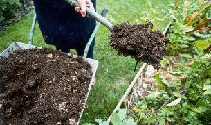 Плохая почва. Что делать чтобы почва не истощалась