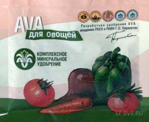 Как часто поливать помидоры. Правильная высадка помидоров в грунт