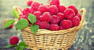 raspberries-leaves-basket