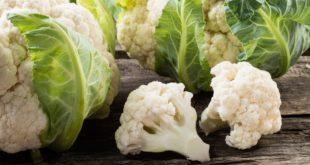 Лучшие сорта цветной капусты. Как вырастить цветную капусту