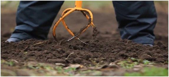 Как удалить сорняки с участка: при помощи уксуса, навсегда, торнадо