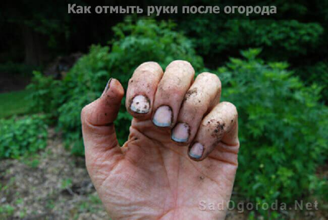 Как отмыть руки после огорода: в домашних условиях, от травы, перекисью водорода, лимонной кислотой