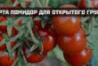 сорта помидор для открытого грунта урожайные низкорослые вкусные