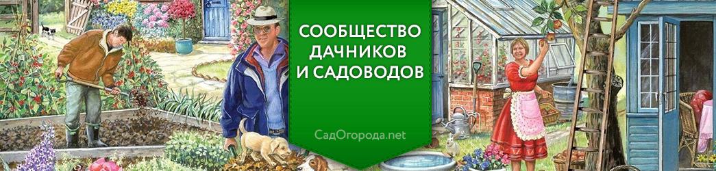 СадОгорода.NET