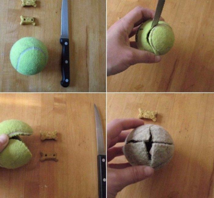 Самая быстрая и простая в изготовлении игрушка для питомцев — из теннисного мячика
